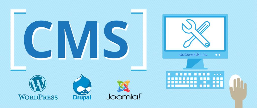 Wordpress CMS Website Development